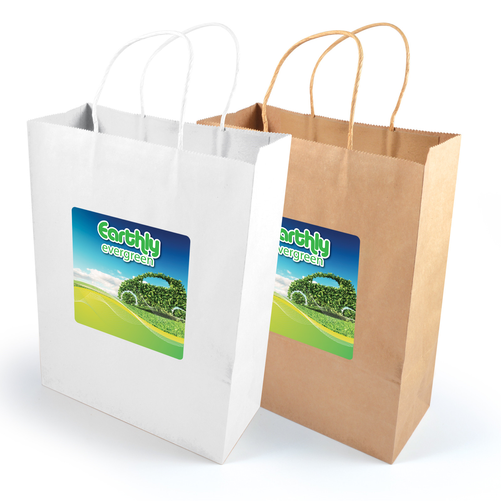 Promotional Product Express Paper Bag