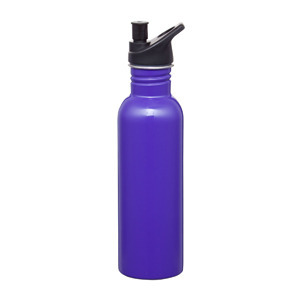 Promotional Product Carnival Stainless Steel Drink Bottle