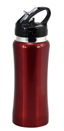 Promotional Product Stainless Steel Drink Bottle With Drinking Straw