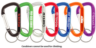 Promotional Product 80mm Carabiner