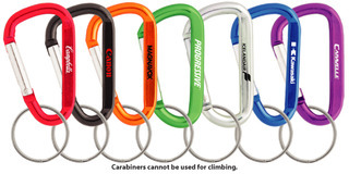 Promotional Product 60mm Carabiner